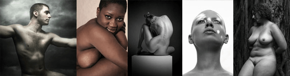 Model Society Newsletter, human beauty as art.